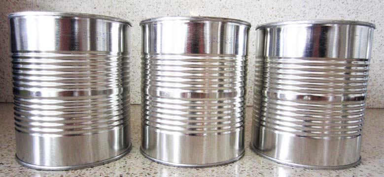 Easy Tin Can Craft Ideas