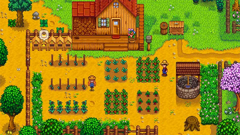 stardew vallley game