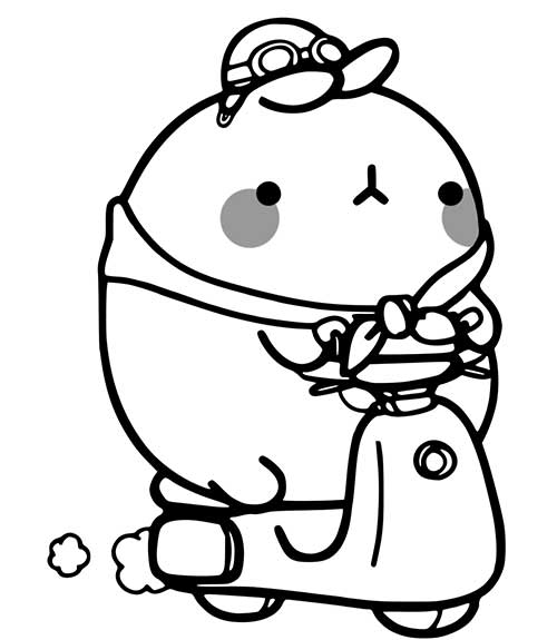 molang on scooter