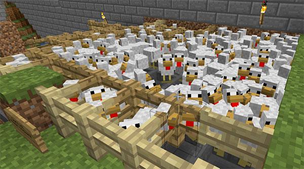 large minecraft chicken farm