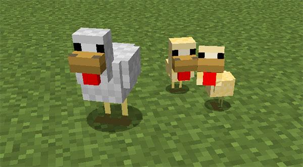 minecraft chicken with babies
