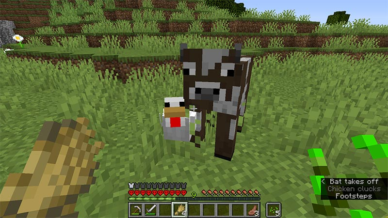 minecraft cow and chicken