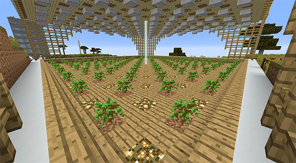 minecraft oak tree farm