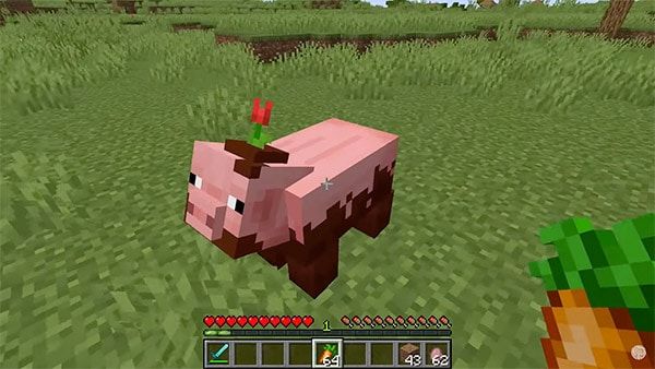 minecraft pig carrot