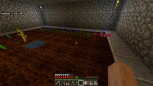 minecraft seed popping out of dirt