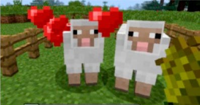 minecraft sheep breeding