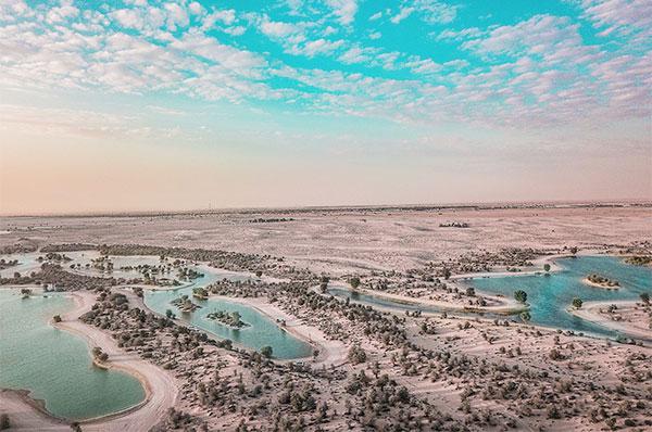 oasis terrain
