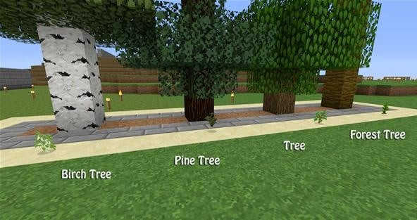 types of minecraft trees
